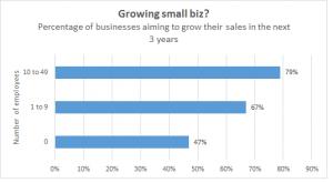 Bix growth chart